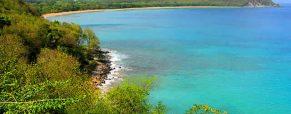 Visite guidée du Parc des Mamelles en Guadeloupe