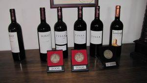 vin-ribera-del-duero-1