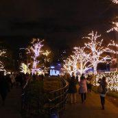 Séjour au Japon, le déroulement des fêtes de fin d'année