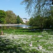Explorer Londres et ses plus beaux jardins botaniques