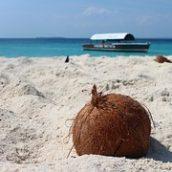 Sur quels critères choisir son vol Paris-Zanzibar?