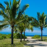 hawaii-1358992__340