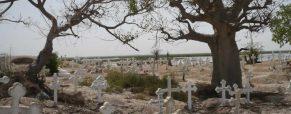 Quelques lieux incontournables à visiter au pays de la Terangua au Sénégal