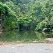 Voyager au Costa Rica en visitant 3 parcs nationaux incontournables
