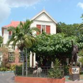 2 activités incontournables à faire en Jamaïque