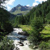 Partir en Italie pour découvrir 2 superbes parcs nationaux