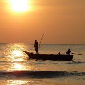 Offrez-vous un voyage de passionné de pêche!