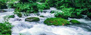 Voyager au Japon pour découvrir Aomori et le lac Towada