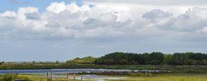 La joie de passer des vacances au vert en Loire Atlantique
