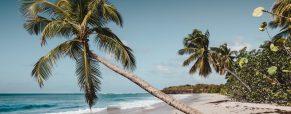 Les Caraïbes façon tricolore: lumières sur les Antilles Françaises