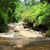 Séjourner en Thaïlande en découvrant les attraits de la ville de Chiang
