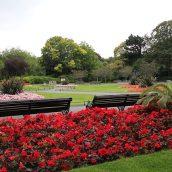 Partir en Irlande au printemps en séjournant à Dublin