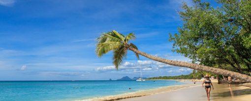 Séjour dans les Caraïbes, pourquoi pas la Martinique ?
