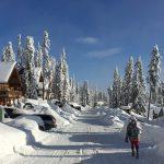 chemin enneigé, Canada