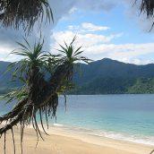 Pourquoi partir aux Comores lors d'un voyage en Afrique ?