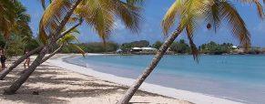 Passer un voyage de noces inoubliable en Martinique