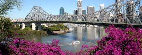 3 activités à privilégier lors d'un séjour à Brisbane en Australie