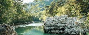 Les quatre meilleures activités pour découvrir les gorges du Verdon