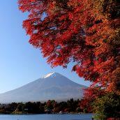 Voyage au Japon: partir à la découverte de la région des Cinq Lacs